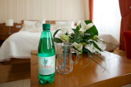 DRINKING CURE WITH MINERAL WATER